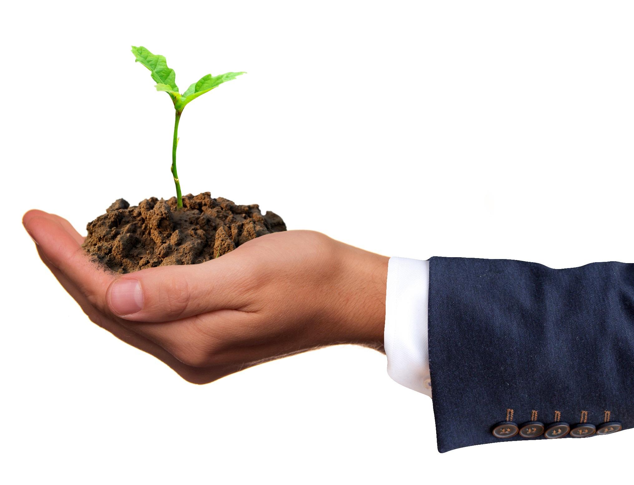 4 etapy rozwoju pracownika w zespole sprzedaży – wg Blancharda